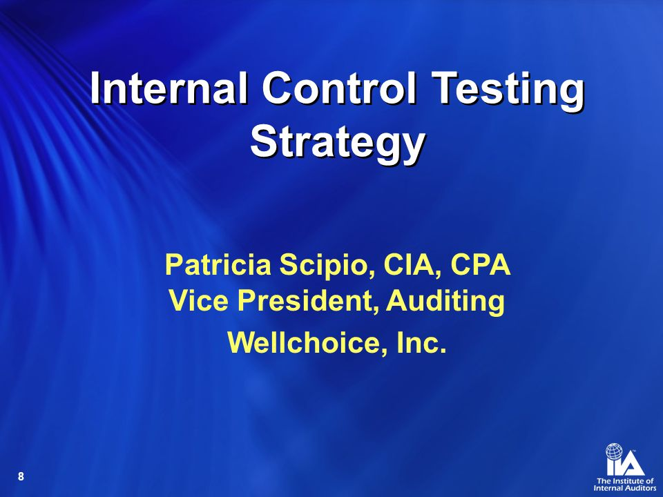 Internal Control Testing Strategy