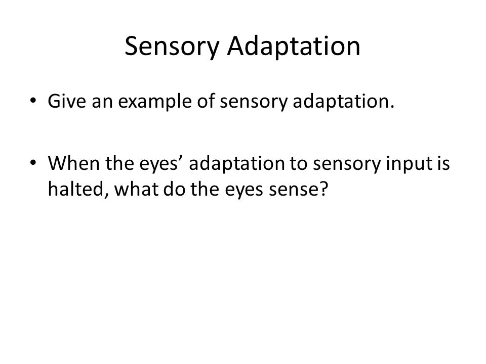 Sensory Adaptation Give an example of sensory adaptation.
