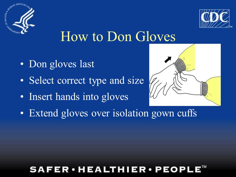 How to Don Gloves Don gloves last Select correct type and size