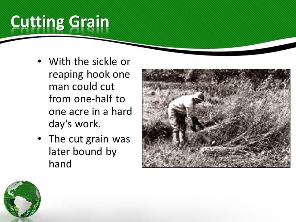 Cutting Grain With the sickle or reaping hook one man could cut from one-half to one acre in a hard day s work.