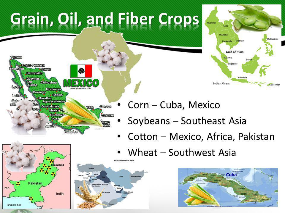 Grain, Oil, and Fiber Crops