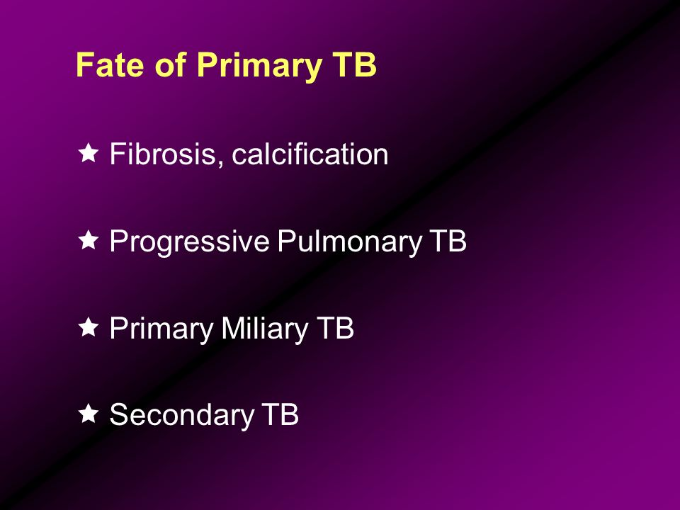 Fate of Primary TB Fibrosis, calcification Progressive Pulmonary TB
