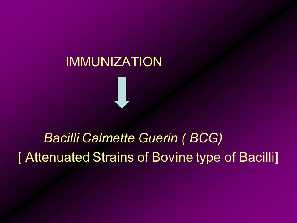 IMMUNIZATION Bacilli Calmette Guerin ( BCG) [ Attenuated Strains of Bovine type of Bacilli]