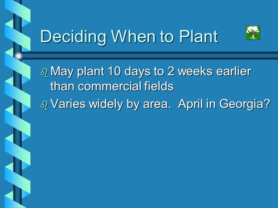 Deciding When to Plant May plant 10 days to 2 weeks earlier than commercial fields.
