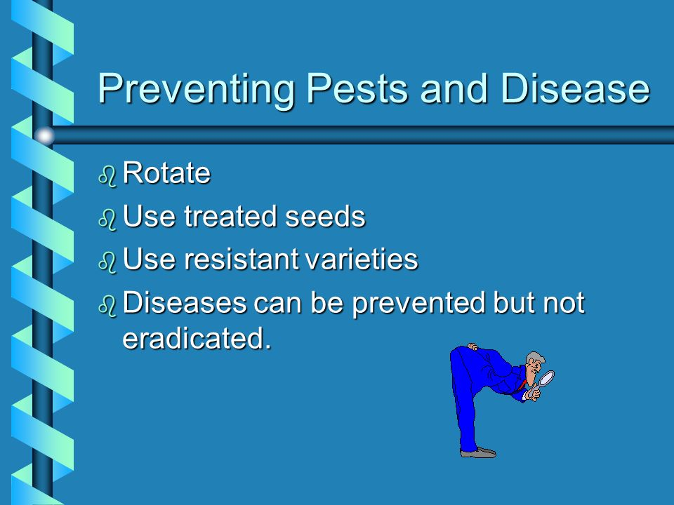 Preventing Pests and Disease