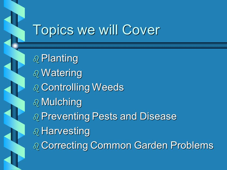 Topics we will Cover Planting Watering Controlling Weeds Mulching