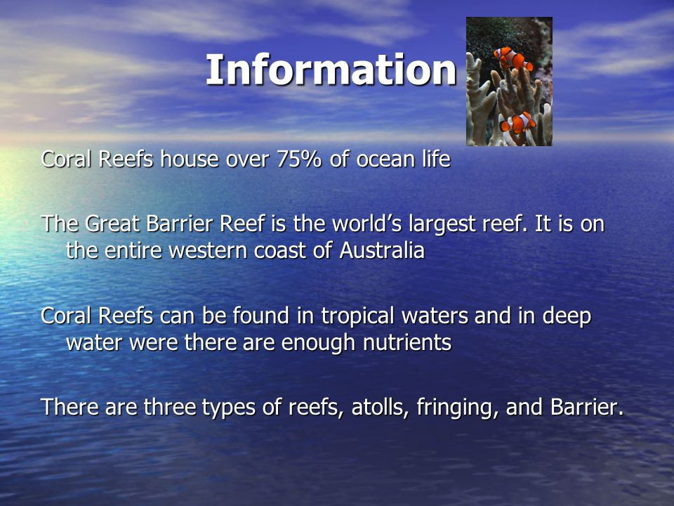 Information Coral Reefs house over 75% of ocean life