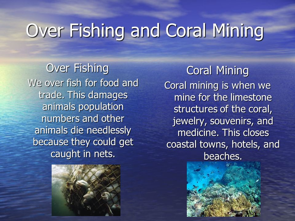 Over Fishing and Coral Mining