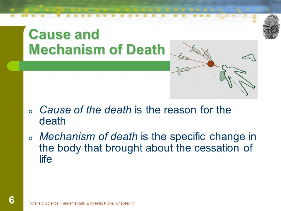 Cause and Mechanism of Death