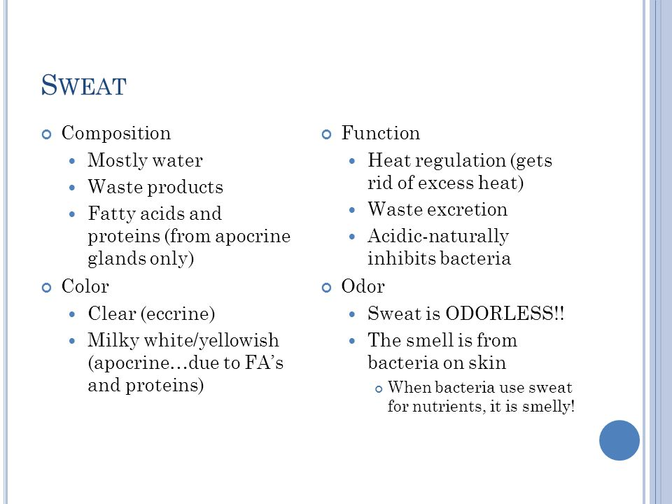 Sweat Composition Mostly water Waste products
