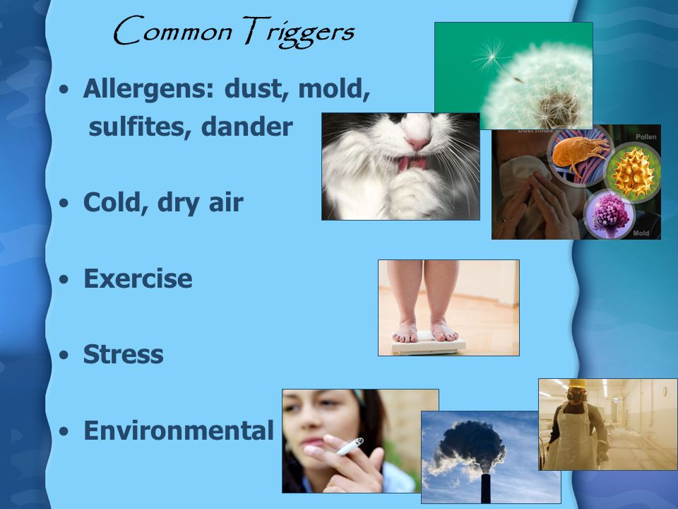Common Triggers Allergens: dust, mold, sulfites, dander Cold, dry air