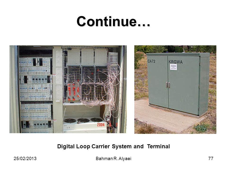 Digital Loop Carrier System and Terminal