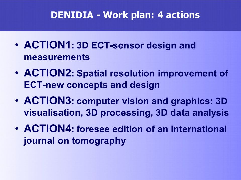 DENIDIA - Work plan: 4 actions