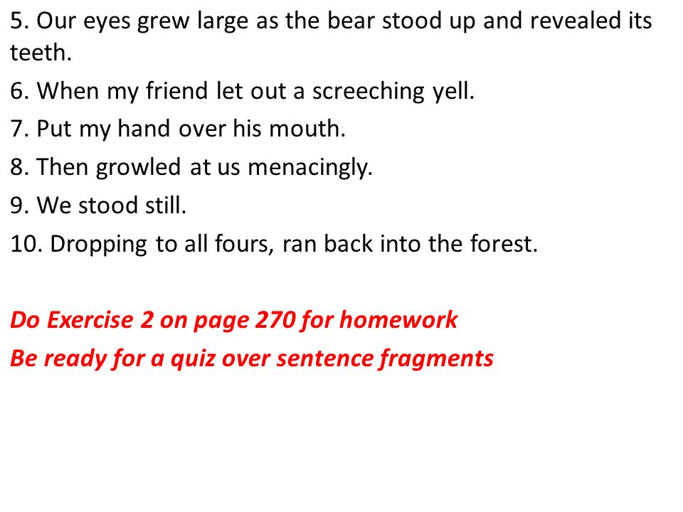 5. Our eyes grew large as the bear stood up and revealed its teeth.