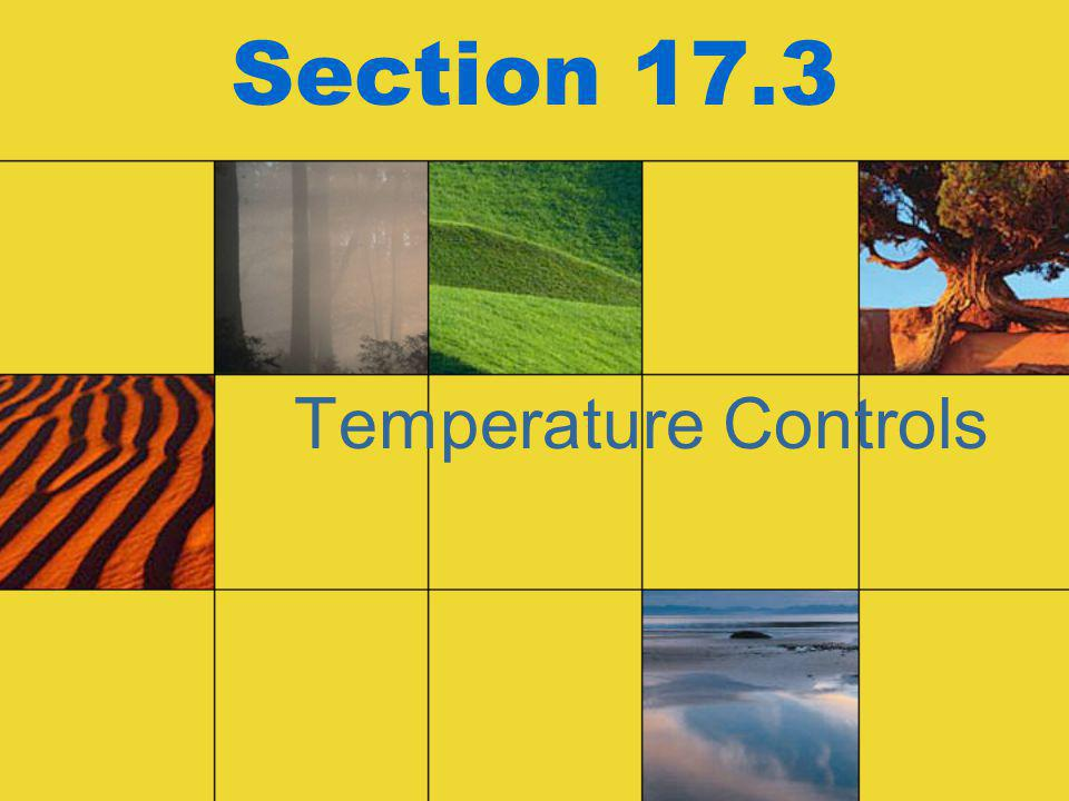 Section 17.3 Temperature Controls