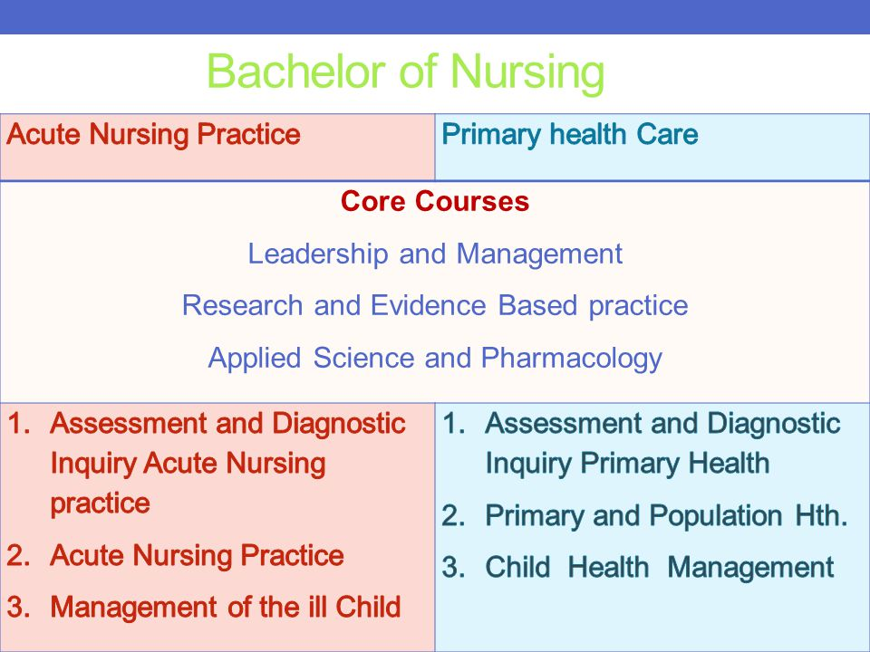 Bachelor of Nursing Acute Nursing Practice Primary health Care