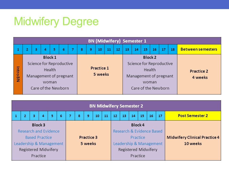 BN (Midwifery) Semester 1 Midwifery Clinical Practice 4