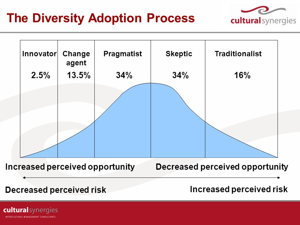 The Diversity Adoption Process