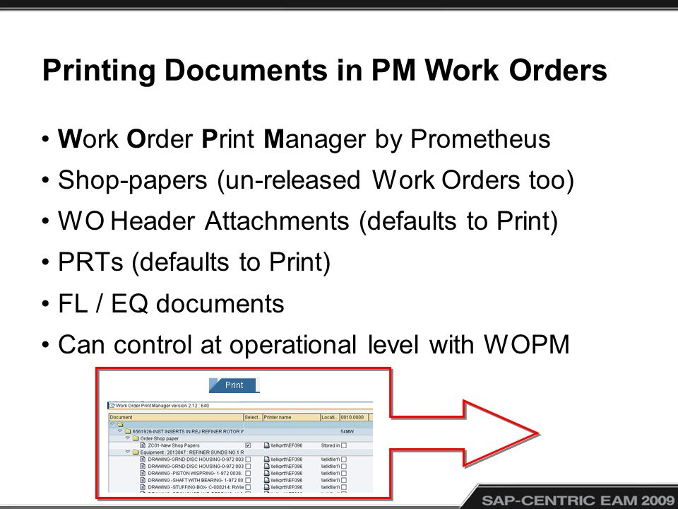 Printing Documents in PM Work Orders