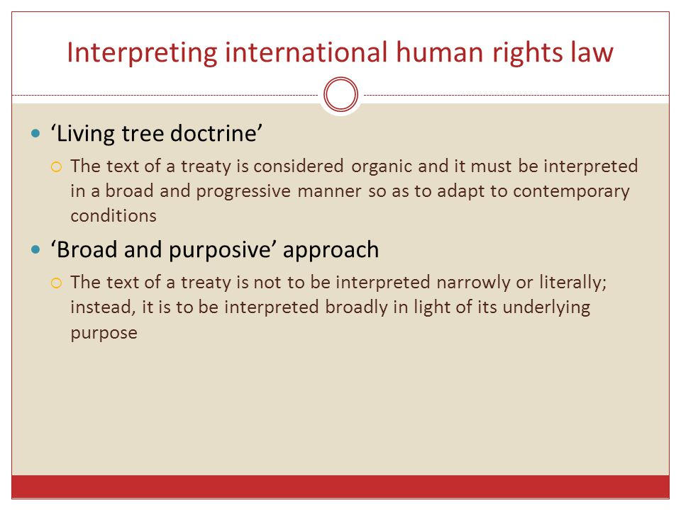 Interpreting international human rights law