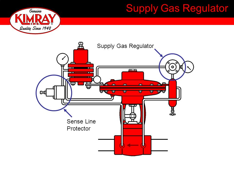 Supply Gas Regulator Supply Gas Regulator Sense Line Protector