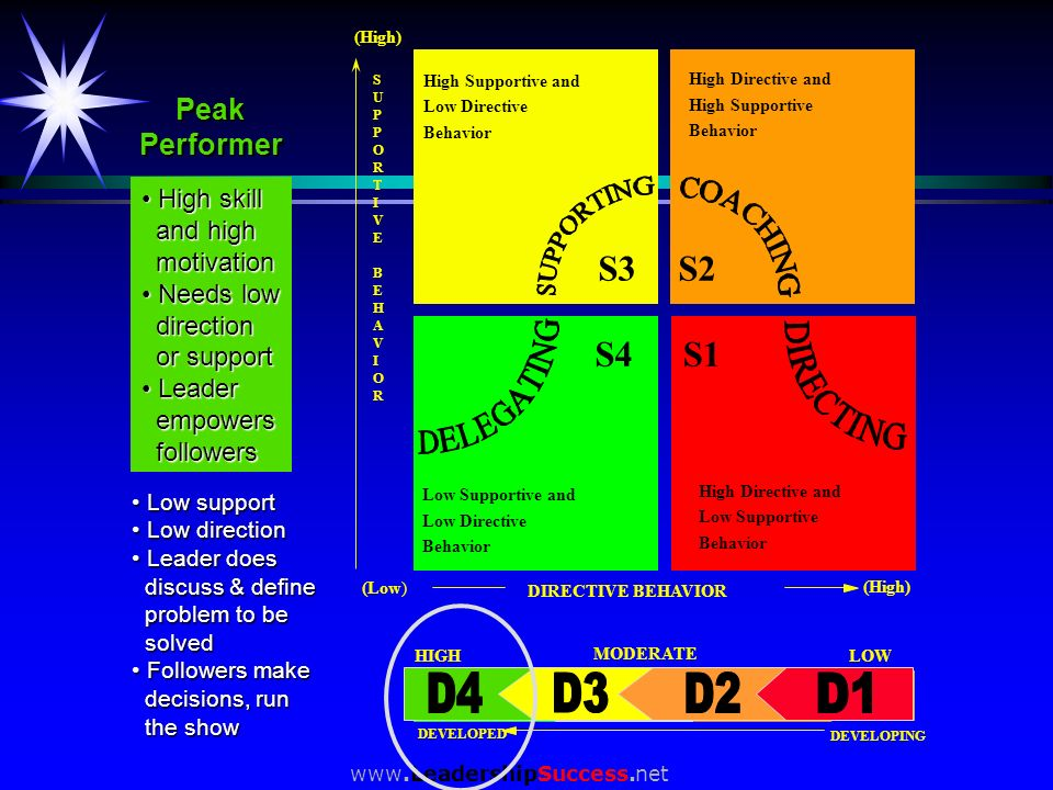D4 S3 S1 S4 S2 Peak Performer High skill and high motivation Needs low