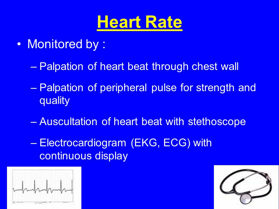 Heart Rate Monitored by : Palpation of heart beat through chest wall