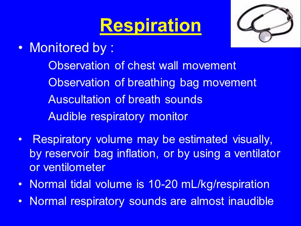 Respiration Monitored by : Observation of chest wall movement