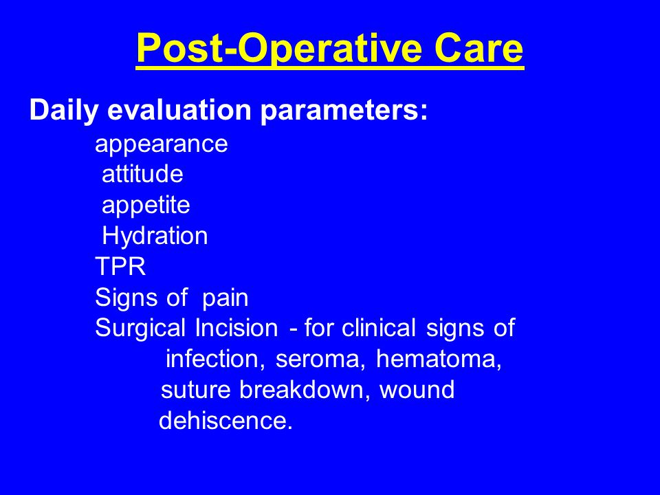 Post-Operative Care Daily evaluation parameters: appearance attitude