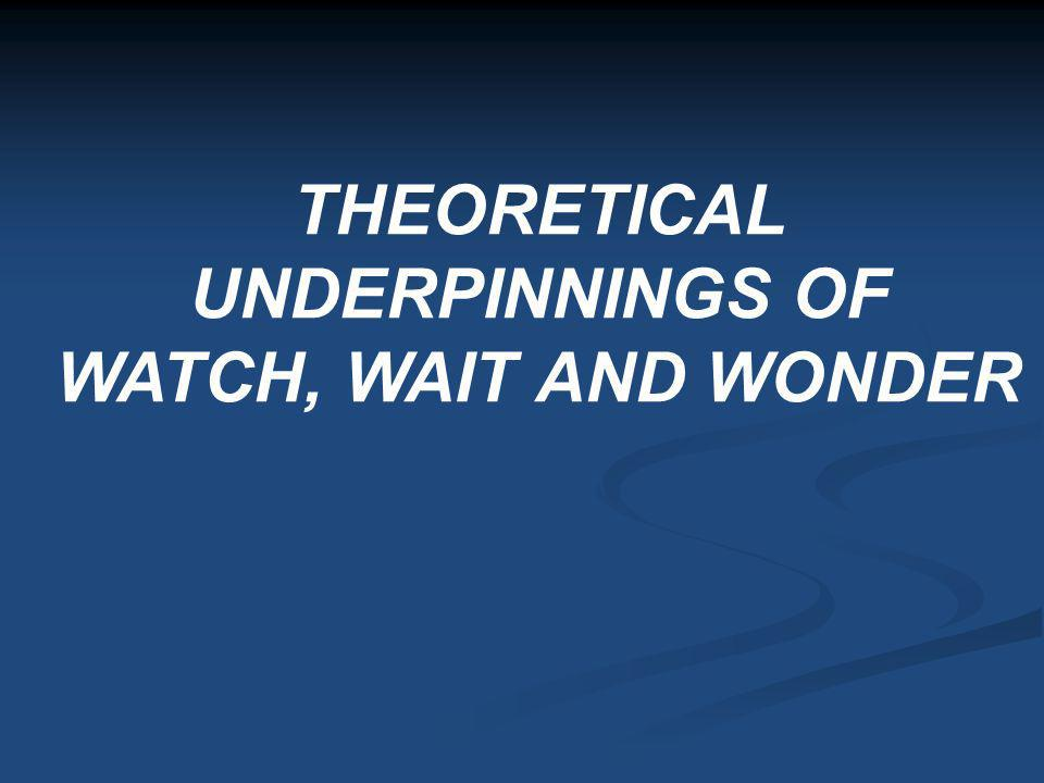 THEORETICAL UNDERPINNINGS OF