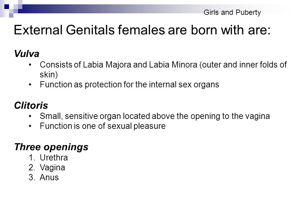 External Genitals females are born with are: