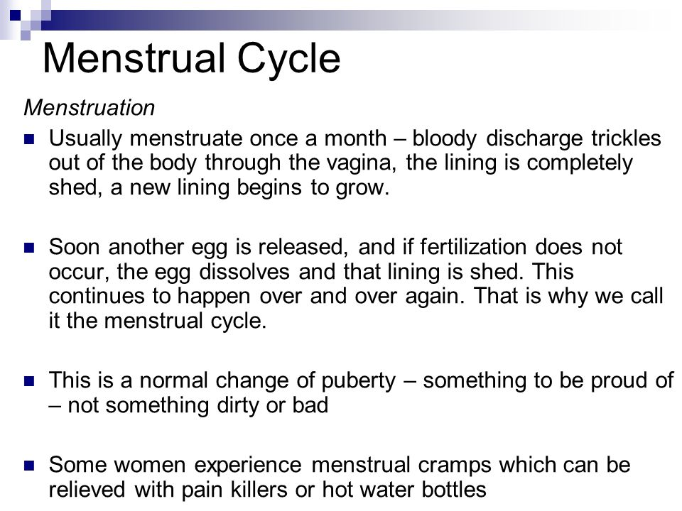 Menstrual Cycle Menstruation