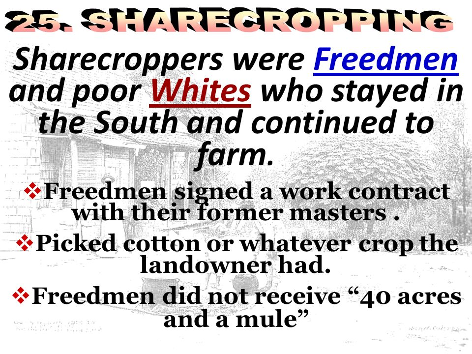 25. SHARECROPPING Sharecroppers were Freedmen and poor Whites who stayed in the South and continued to farm.