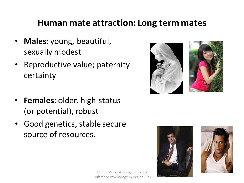 Human mate attraction: Long term mates