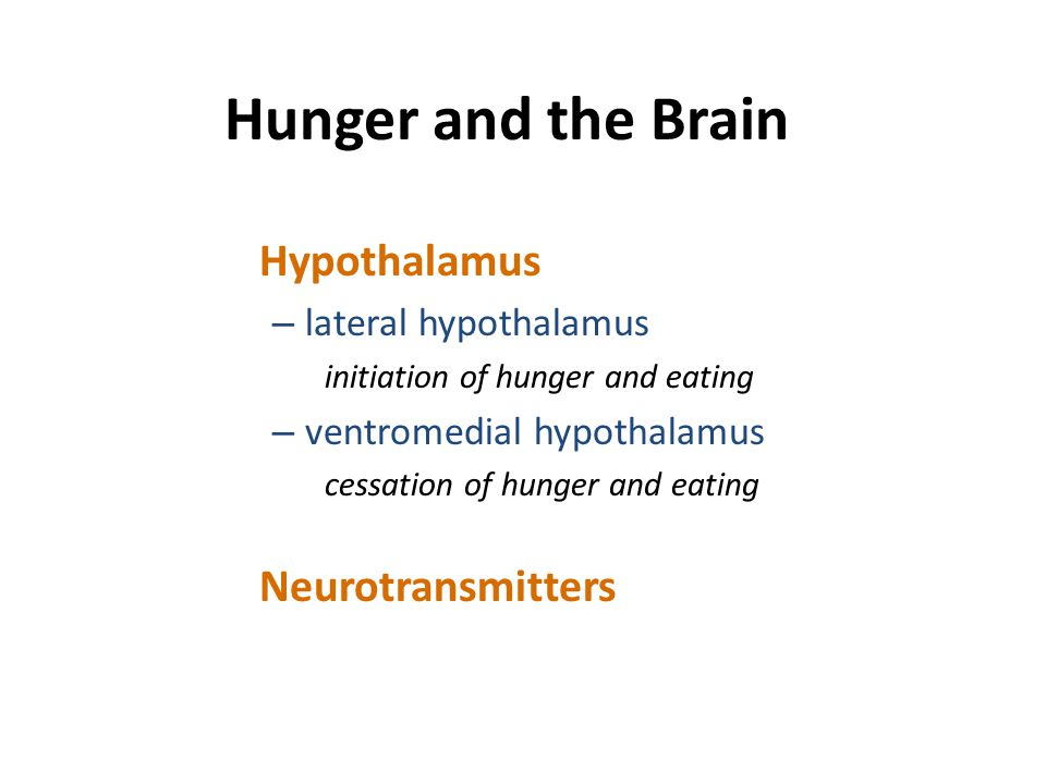 Hunger and the Brain Hypothalamus Neurotransmitters