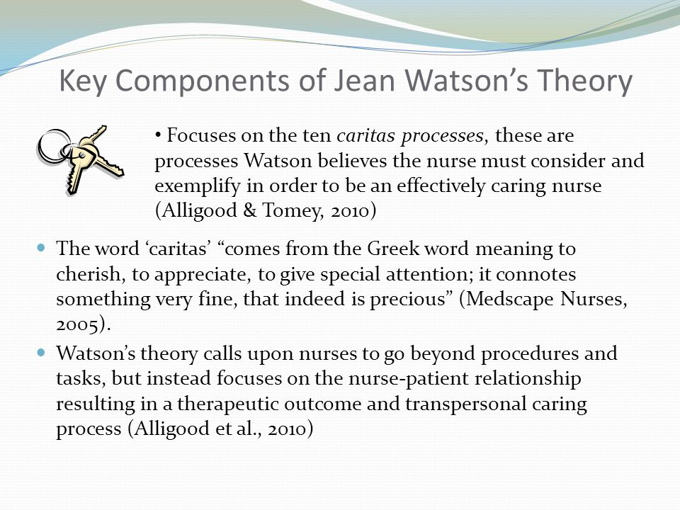 how is jean watson theory applied to nursing