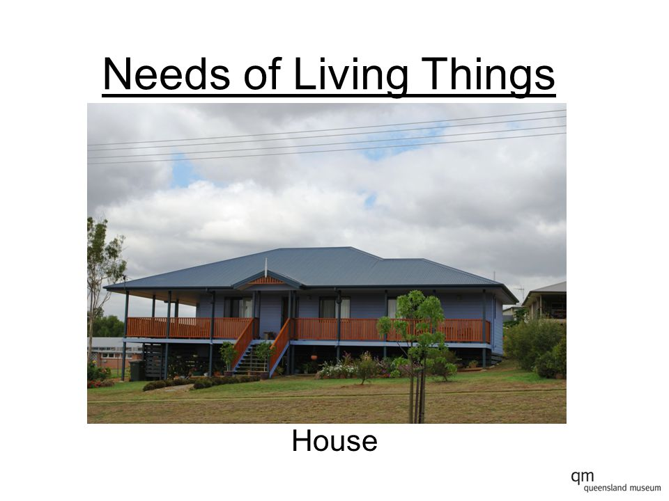 Needs of Living Things House