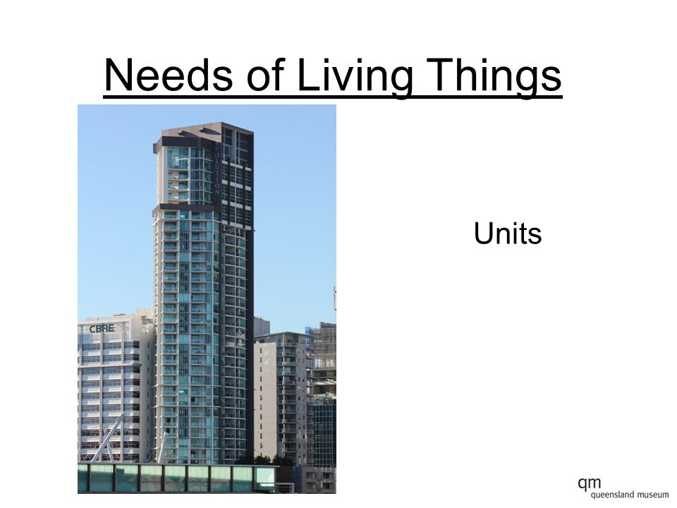 Needs of Living Things Units