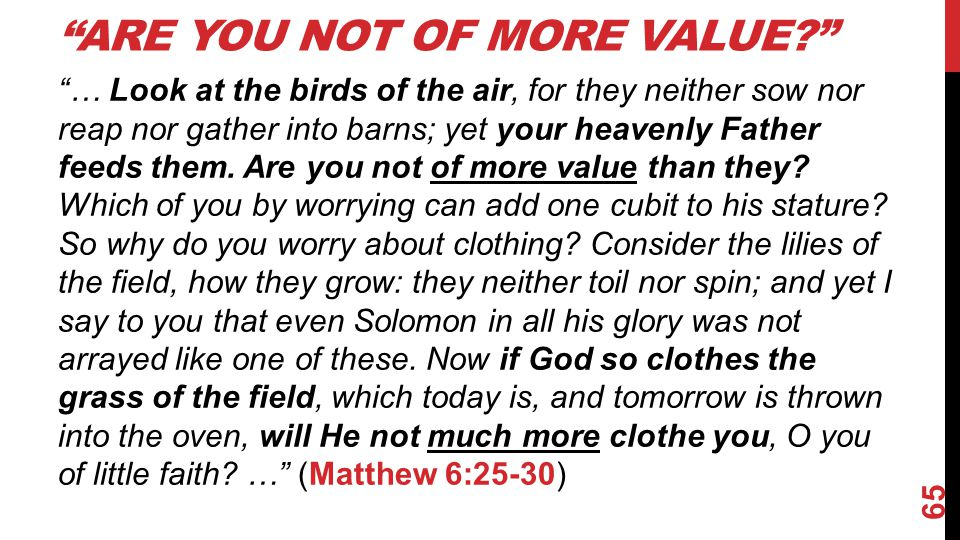 Are you not of more value