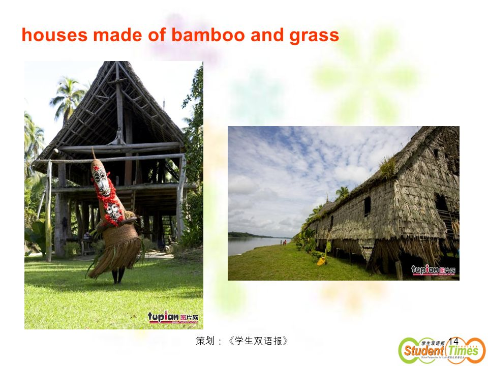 houses made of bamboo and grass
