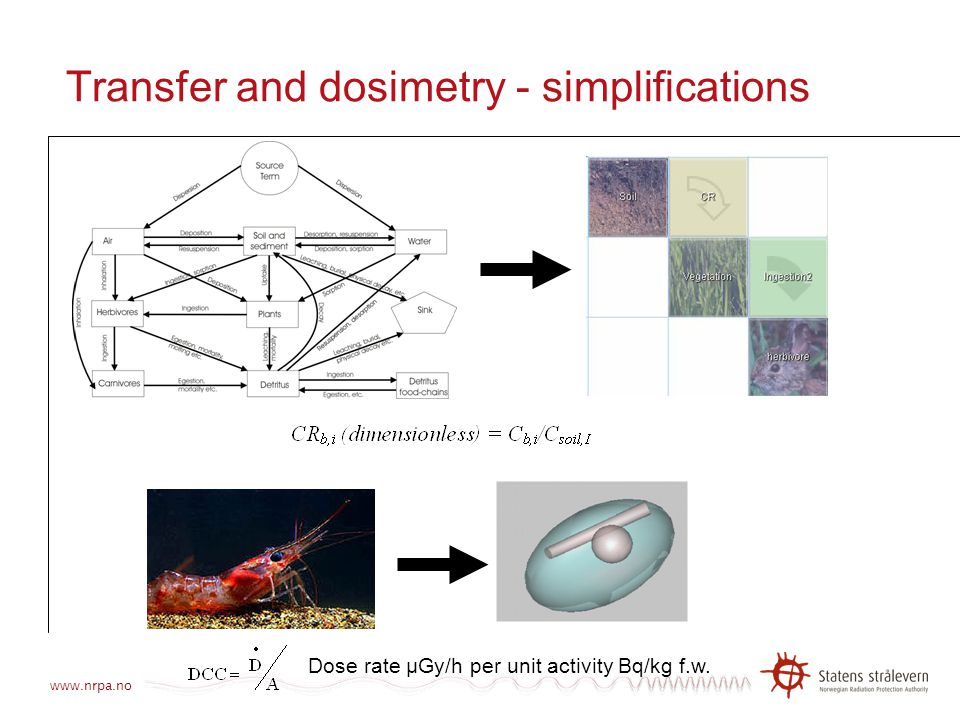 Transfer and dosimetry - simplifications