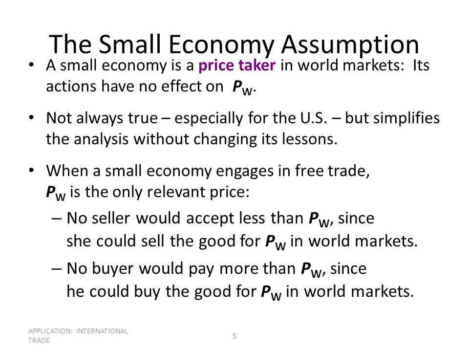 The Small Economy Assumption