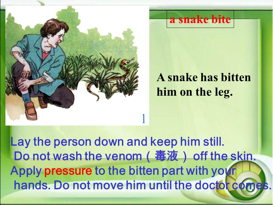 a snake bite A snake has bitten him on the leg. Lay the person down and keep him still. Do not wash the venom(毒液) off the skin.