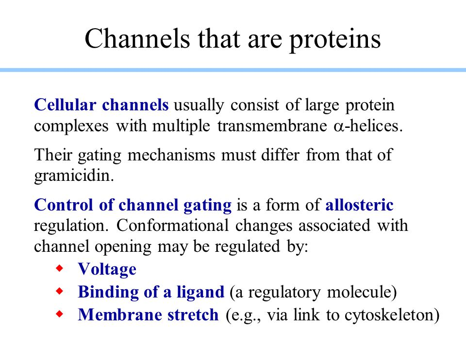 Channels that are proteins