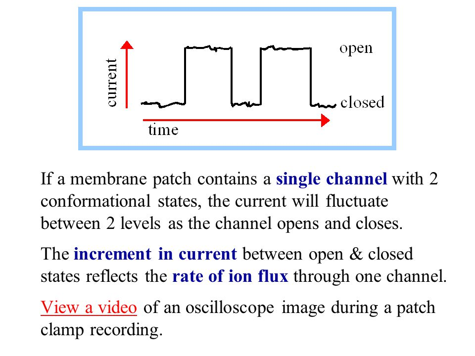 If a membrane patch contains a single channel with 2 conformational states, the current will fluctuate between 2 levels as the channel opens and closes.