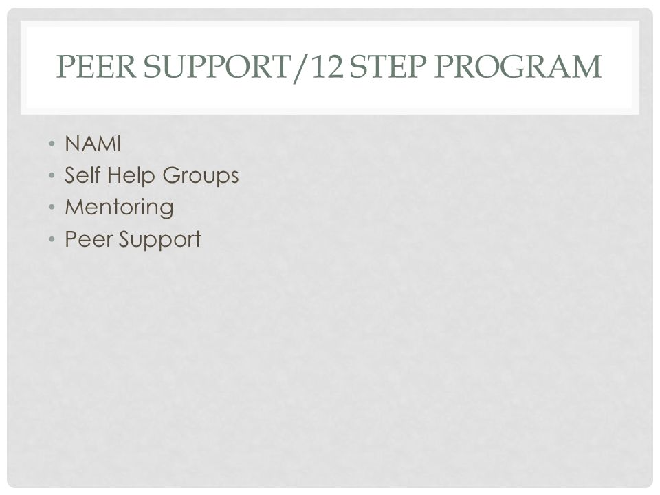 PEER SUPPORT/12 STEP PROGRAM
