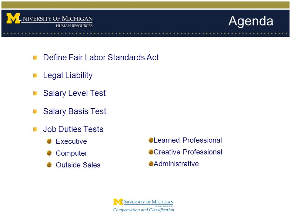 The FLSA at the University of Michigan