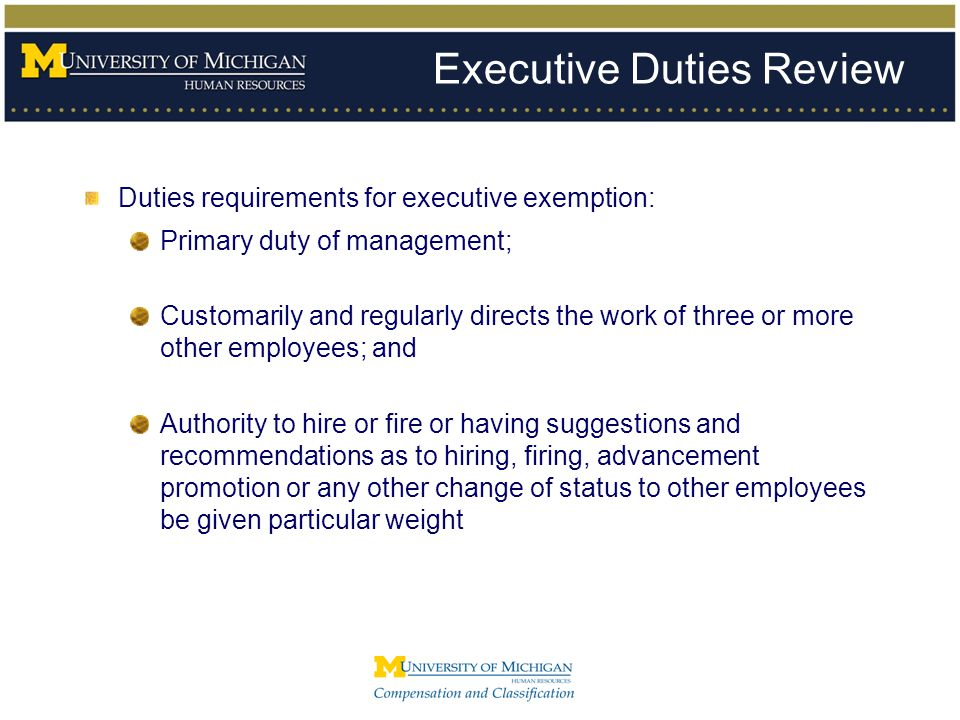 Executive Duties Review