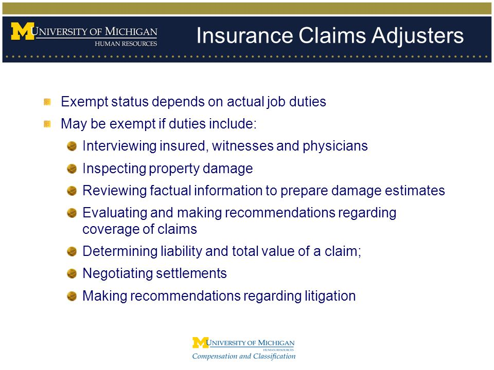 Insurance Claims Adjusters