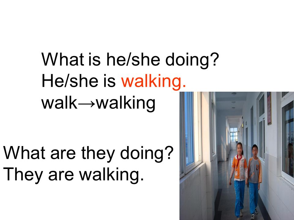 What is he/she doing He/she is walking. walk→walking What are they doing They are walking.
